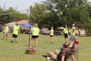volleyville
